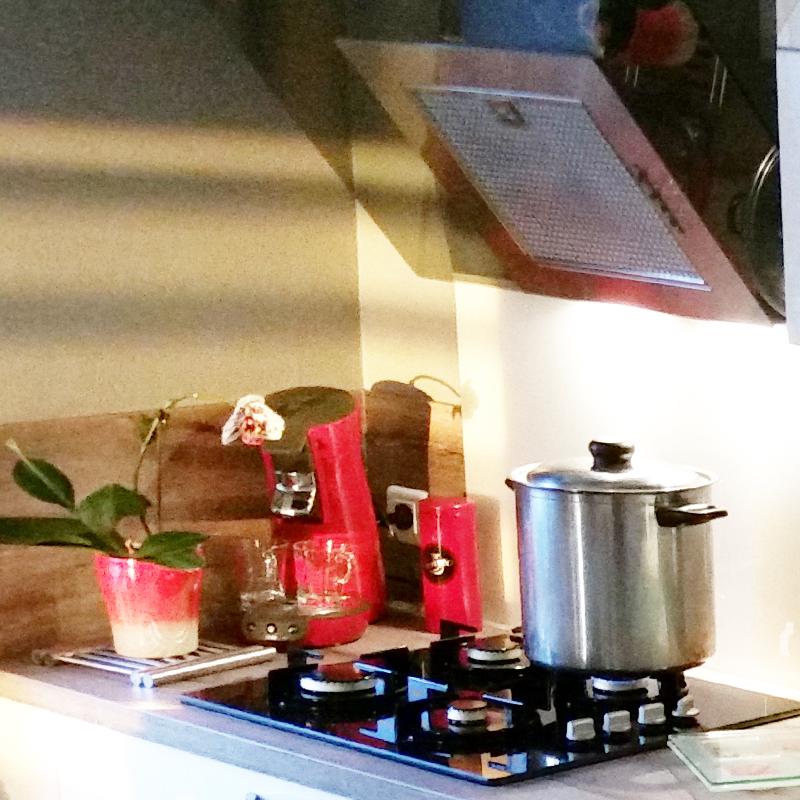 cuisine magnolia brillant